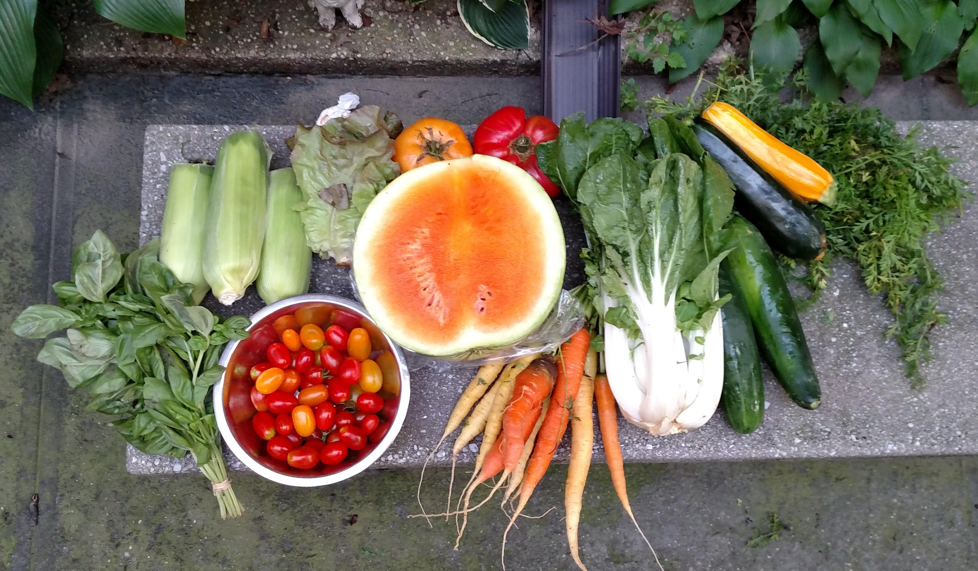 Love fresh veggies?? Join the Brooklyn Bridge CSA